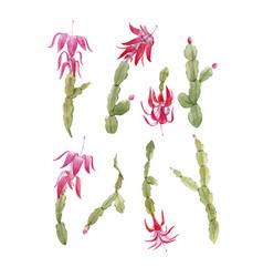 schlumberger cactus set vector image