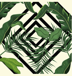 tropical leave palm tree design vector image vector image