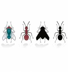 fly and ant vector image