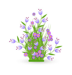 green grass cornflower flowers bush vector image