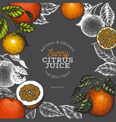Orange fruit design template hand drawn fruit on vector