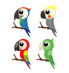 set of different cartoon parrots exotic birds vector image