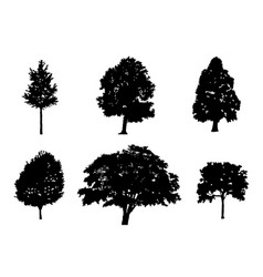 Tree collection silhouette vector