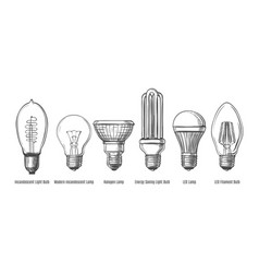 black lightbulbs sketch vector image