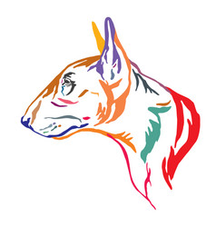 Colorful decorative portrait bull terrier dog vector