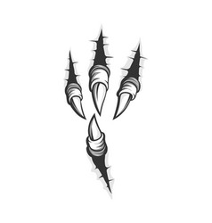 Eagle claw scratches vector