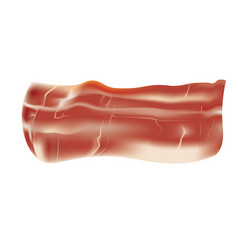 fresh bacon on white background vector image