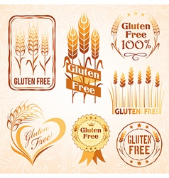 Gluten free design elements vector image