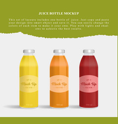 Juice bottle glass isolated on white background vector