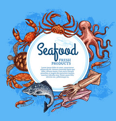 seafood and fish crab salmon shrimp squid vector image