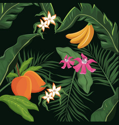 tropical fruits and flowers leaves palm wallpaper vector image