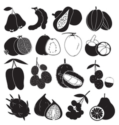 Tropical Fruits Set vector image