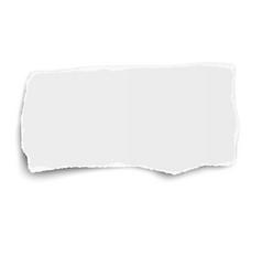White rectangular torn paper tear vector