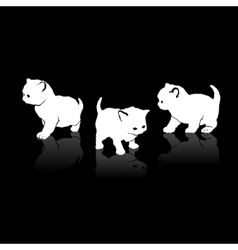 White Cats Silhouettes Icons on Black Background vector image