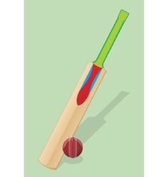 Bat and ball for cricket vector image