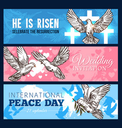 Dove bird banner for wedding and religion design vector