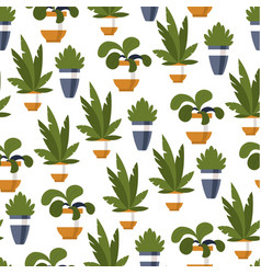 flowers in pots decorative plants seamless vector image