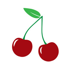 garden cherry icon vector image