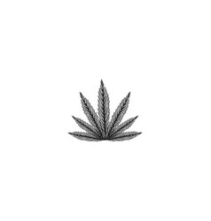 hand drawn cannabis leaf logo designs inspiration vector image
