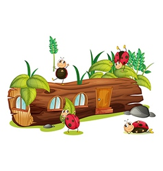 Ladybugs and a house vector image vector image