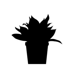Potted plants silhouette vector image
