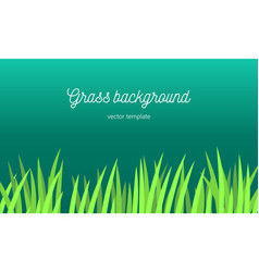 grass background tamplate vector image