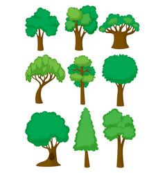 different shapes of tree vector image