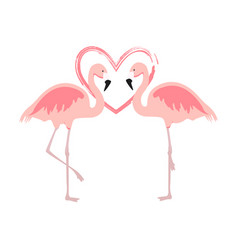 cartoon pink flamingos cute flamingo couple birds vector image