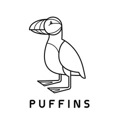puffins logo design template linear style vector image