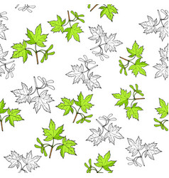 seamless pattern with hand drawn maple leaves vector image