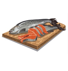 sliced salmon fish vector image