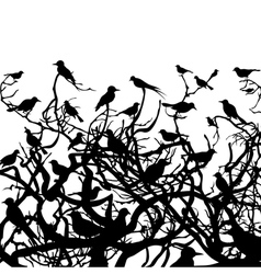 birds sit on a tree vector image