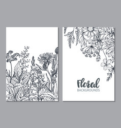 Floral backgrounds with hand drawn herbs vector