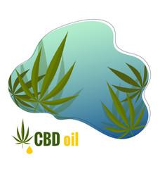 Logo with hemp leaf and text cbd oil vector