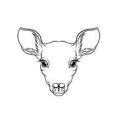 Sketch of roe deers head portrait of forest vector