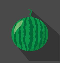 watermelon cartoon flat icondark background vector image