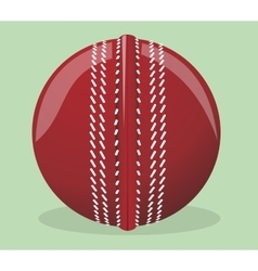 Ball for cricket vector image vector image