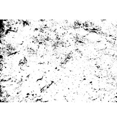 Grunge texture white black vector image vector image