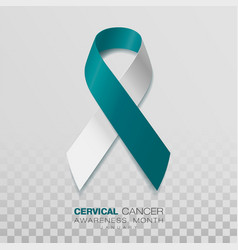 cervical cancer awareness month teal and white vector image