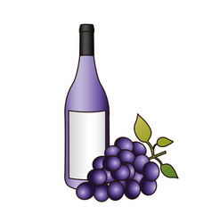 colorful silhouette with bottle of purple wine and vector image