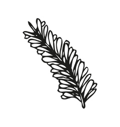 Doodling hand drawn feather vector image