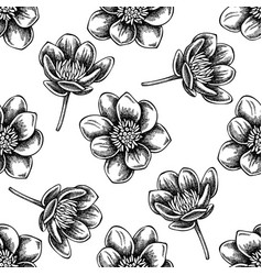 seamless pattern with black and white celandine vector image