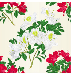 Seamless texture white and red rhododendron twig vector