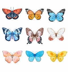 Watercolor butterflies set vector