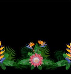 tropical seamless border vector image vector image