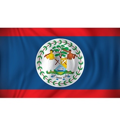 Flag of Belize vector image