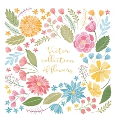 Hand drawn floral collection vector image vector image
