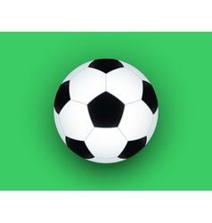 Soccer ball on green vector