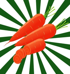 1 carrots sectional vector image