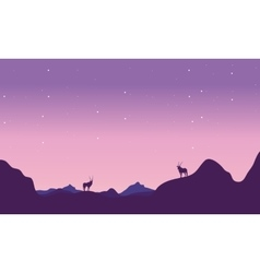At night antelope in hill landscape silhouette vector image